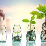 Panduan Mencegah Terjadinya Kerugian Investasi Reksadana